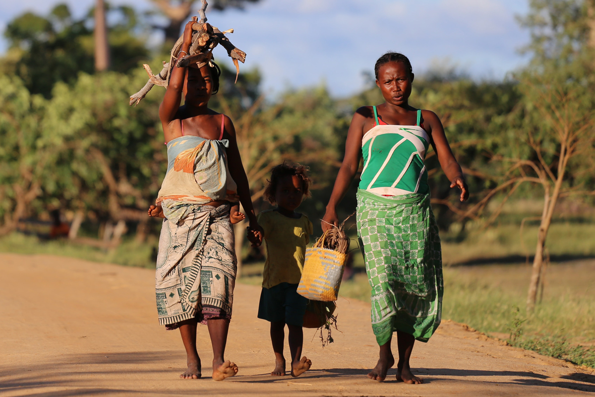 Climate, Political And Socio-Economic Emergencies In Southern Africa